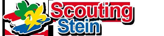 Scouting Stein
